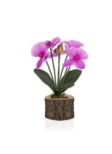 Çiçekmisin Doğal Kütük Saksıda Yapay Islak Orkide Fuşya